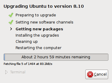 Upgrade to Ubuntu 8.10 Beta