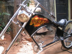 Custom Chopper Bicycle 02